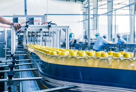 Photo of bottling plant. Topic: 5 Essential Steps for Choosing the Right Control Panel